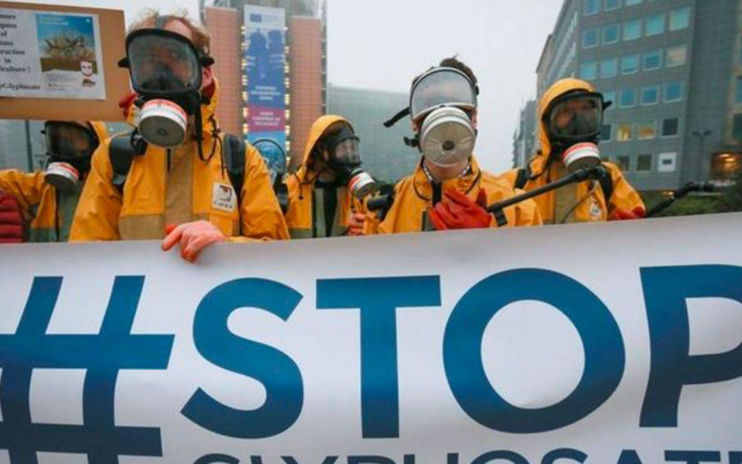El glifosato, sustancia química de herbicidas, ¿cancerígeno?